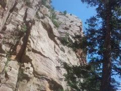 Rock Climbing Photo: Red garden