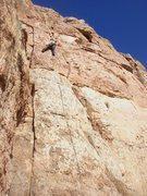 Rock Climbing Photo: Emma leading White Punks.
