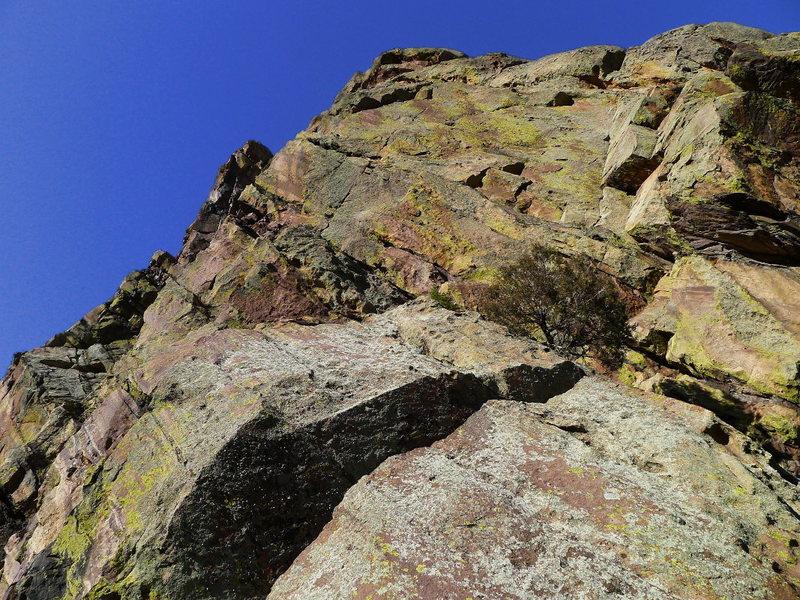 Rock Climbing Photo: Where Anthill and Pseudo Sidetrack split (aka Juni...