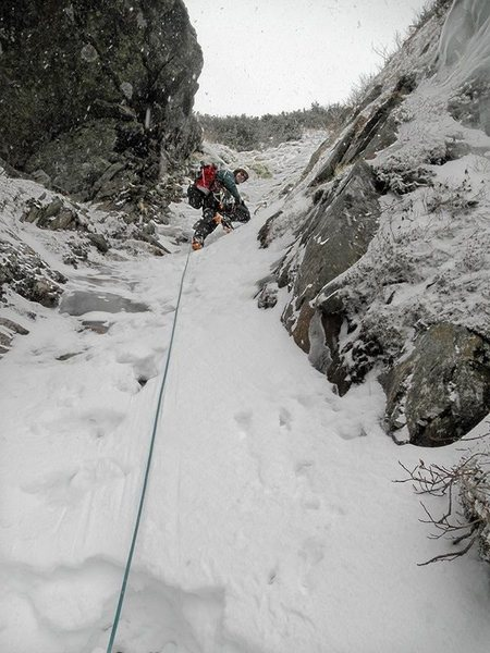 Pinnacle Gully, Mt. Washington