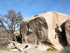 Rock Climbing Photo: James on Manx (V-easy), Joshua Tree NP