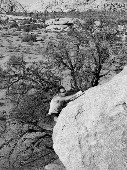 Rock Climbing Photo: Topping out on Undertow (V3), Joshua Tree NP