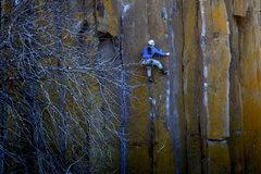 Rock Climbing Photo: Christina moving through the crux on Men's Crisis ...