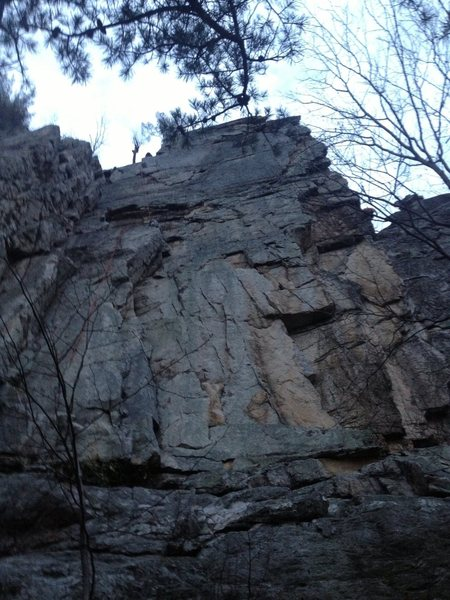 Rock Climbing Photo: Snake face