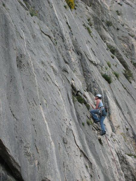 Rock Climbing Photo: Out of the woods on Le Boulon de Droite