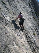 Rock Climbing Photo: Slabbin' up fine features on Les Gemeaux Jumeaux