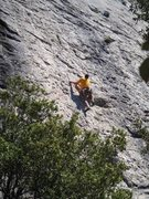 Rock Climbing Photo: Out of the trees on Directe du Grand Parcours