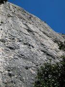 Rock Climbing Photo: Le Denea Depeuf