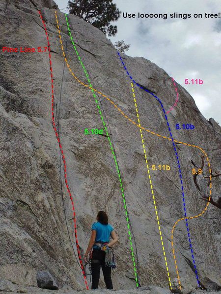 Rock Climbing Photo: A second topo showing Pine Line and the neighborin...