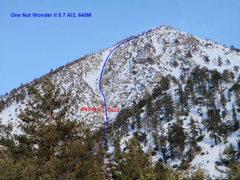 Rock Climbing Photo: One Nut Wonder topo