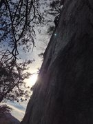 Rock Climbing Photo: Almost to the roof after the seemingly never endin...