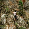 Climbing and cleaning.<br> The lost world of Tambun, Ipoh, Malaysia<br> the route is about 5.10a