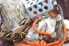 Rock Climbing Photo: Old drilled hex nuts from 70's attracting my pet s...