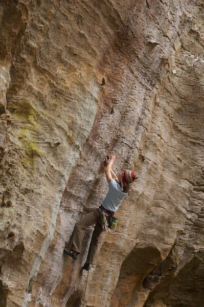 Swallow the Hollow, 12a