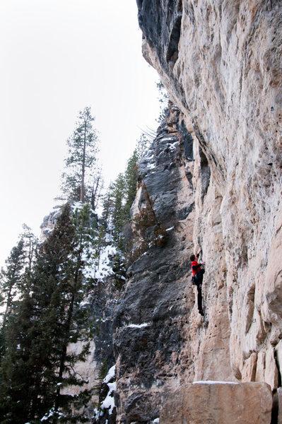 Rock Climbing Photo: Monster Baiter, 5.10b Land of the Shorties, Sunshi...