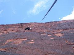 Rock Climbing Photo: Neon Sunset (Red Rock)