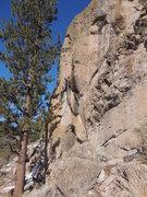 Rock Climbing Photo: Static Cling