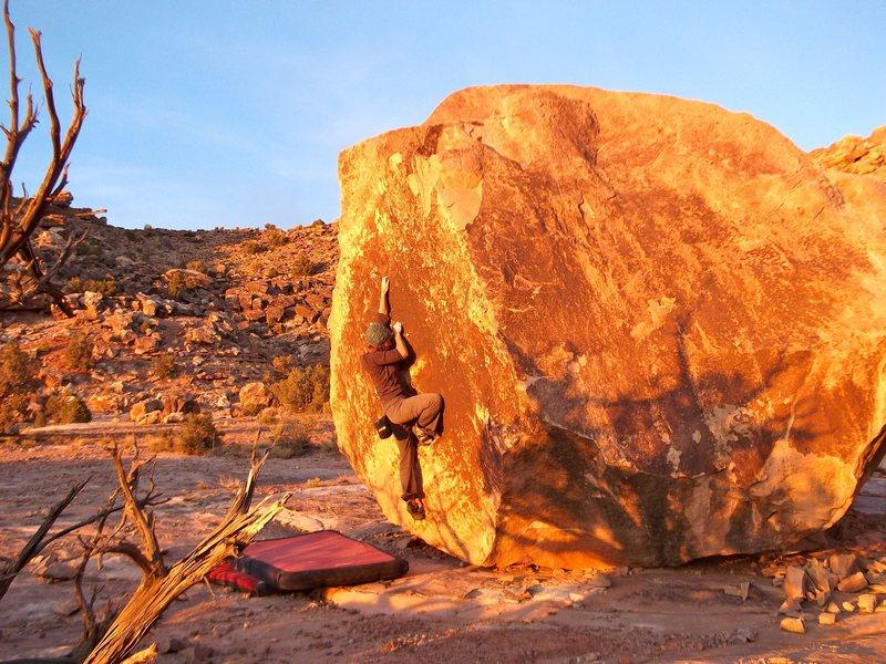 Adeline climbing Fossil.