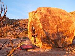 Rock Climbing Photo: Adeline climbing Fossil.