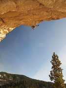 Rock Climbing Photo: Terveen in the redpoint crux