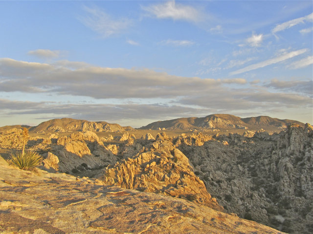 View of Joshua Tree NP from the top of the Lost Horse Wall