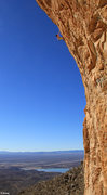 Rock Climbing Photo: TALL!!! Cody Roth up high on his 150 foot 5.14 pro...