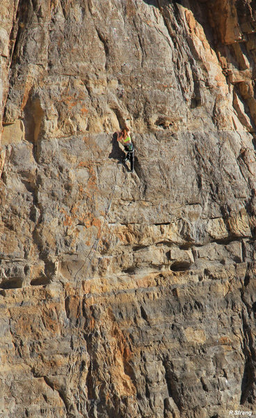 """Rock Climbing Photo: The incredable 1/2"""" crimps seem to go on fore..."""
