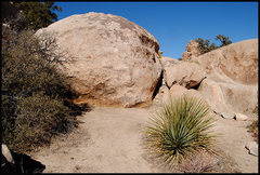 Rock Climbing Photo: Iron Door Cave Boulder. Photo by Blitzo.