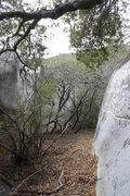 Rock Climbing Photo: The Boulder Hallway