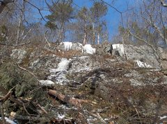 Rock Climbing Photo: Debris of trees