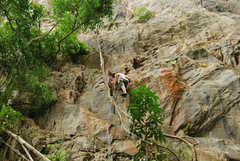 "Rock Climbing Photo: Ashby Robertson leading ""Roots and Fruits&quo..."