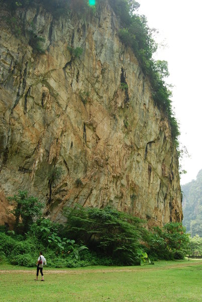 The Tiger wall<br> Lost World of Tambun, Ipoh, Malaysia