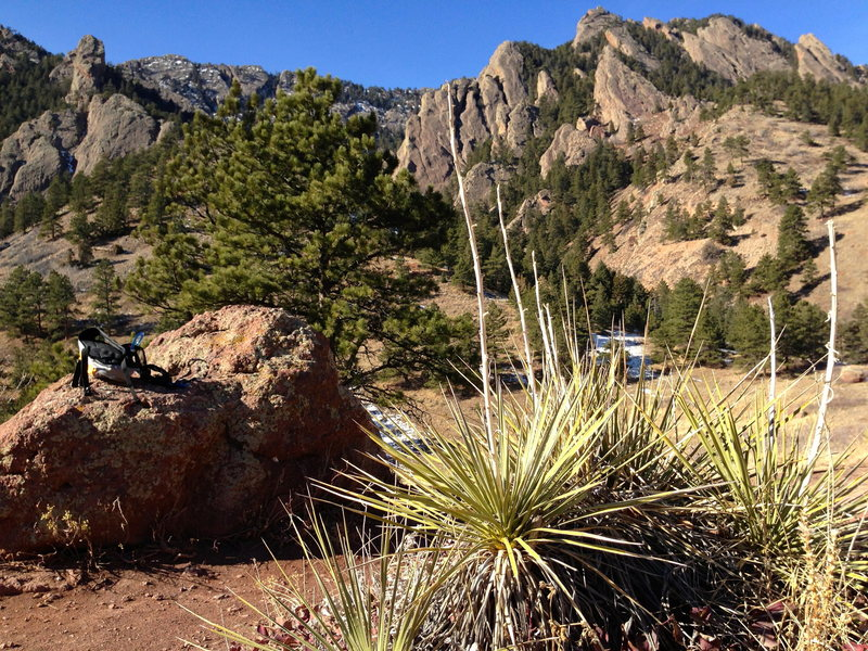 Walking from NCAR.