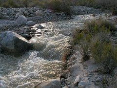 Rock Climbing Photo: Desert water, Mission Creek Preserve