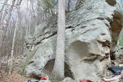 Rock Climbing Photo: SDS left of the tree in the low scoop.