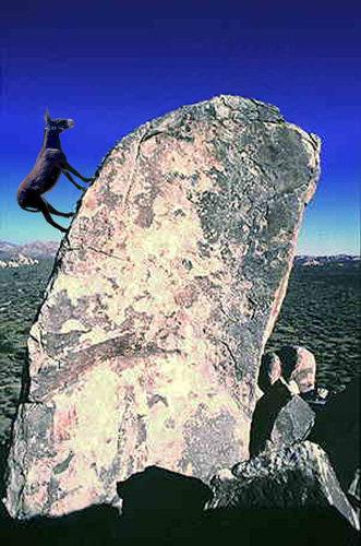 Bouldering pro