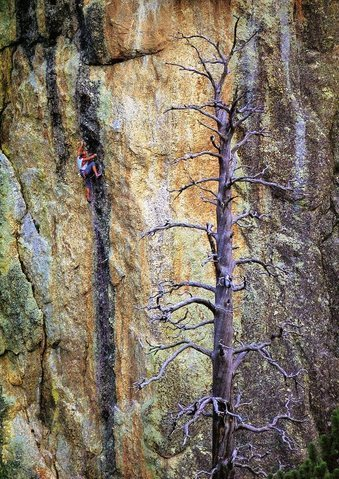 Todd Skinner doesn't fear his horse! In the the crux.