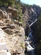 Rock Climbing Photo: Woodbine