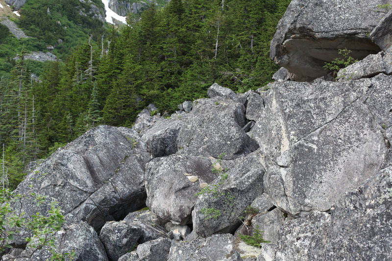 Lower talus field. The overhang in the upper right is part of a boulder that is 35 feet tall and about 80 feet long, with overhanging sections on many sides.