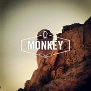 Rock Climbing Photo: The Monkey.