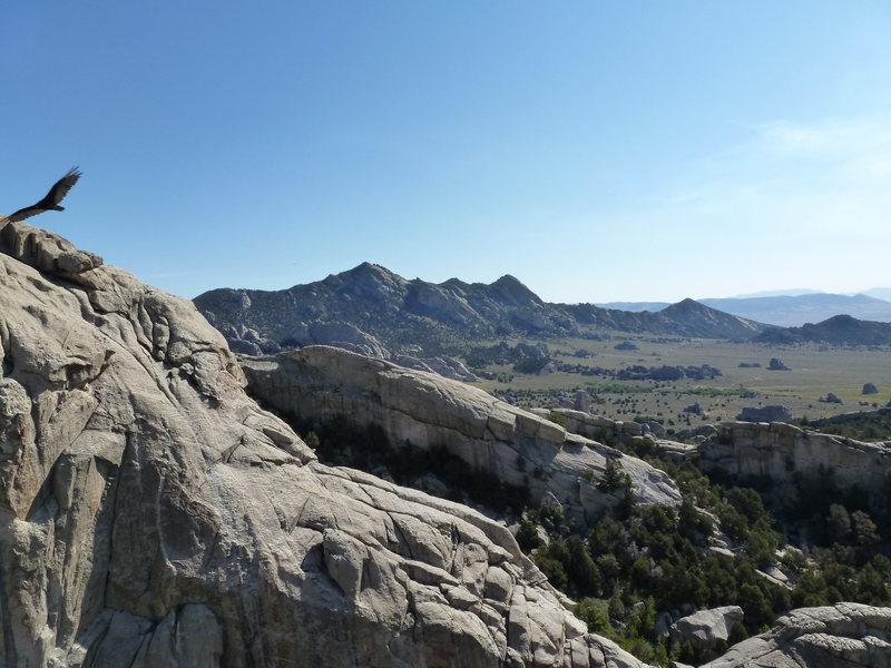 Rock Climbing Photo: City