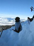 Rock Climbing Photo: good ski dog