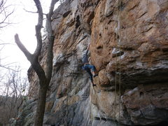Rock Climbing Photo: The Snag