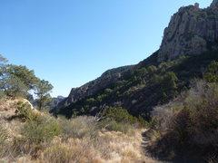 Rock Climbing Photo: near laguna meadow