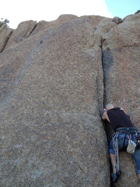 Rock Climbing Photo: Worm