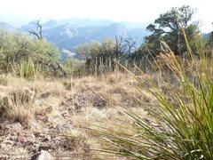 Rock Climbing Photo: near camp