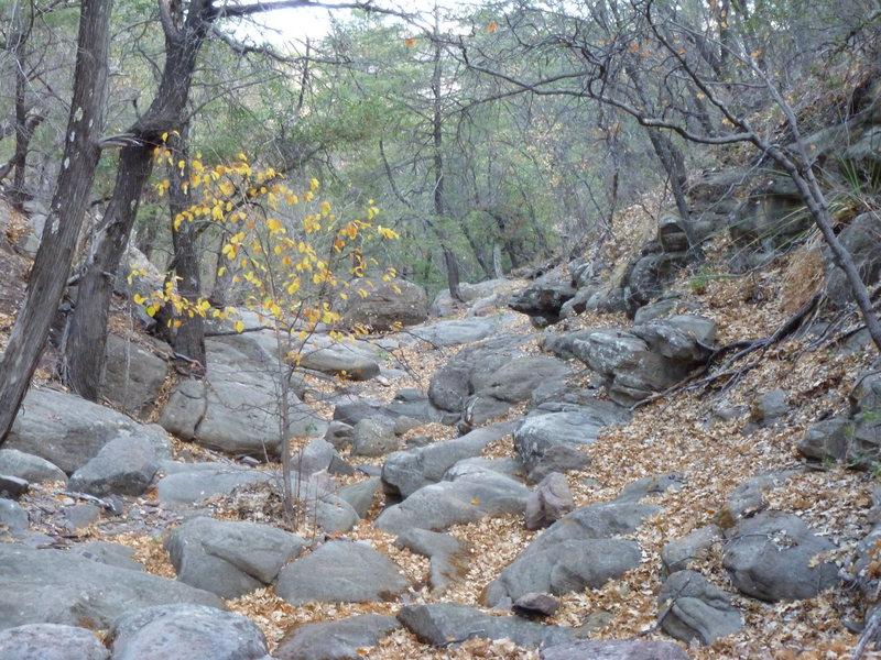 boot canyon