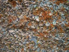 Rock Climbing Photo: Vedauwoo lichen