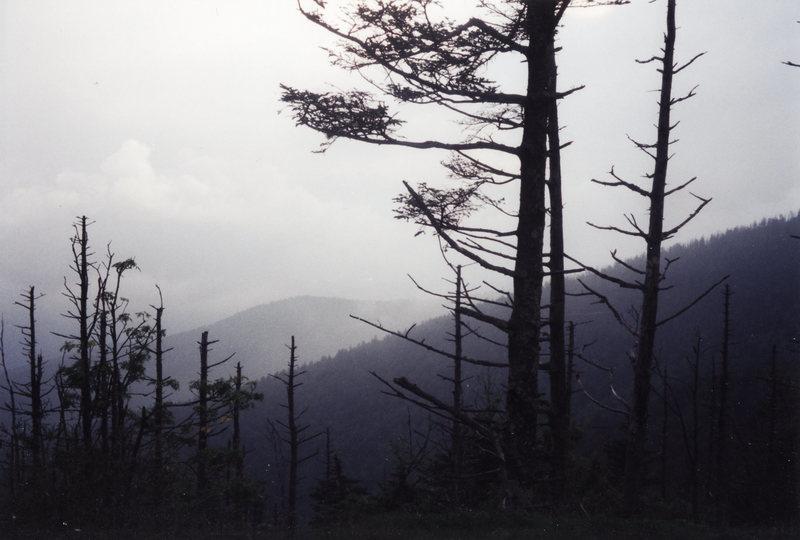 Rock Climbing Photo: Great Smoky Mountains