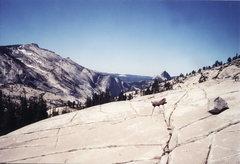 Rock Climbing Photo: Tuolumne